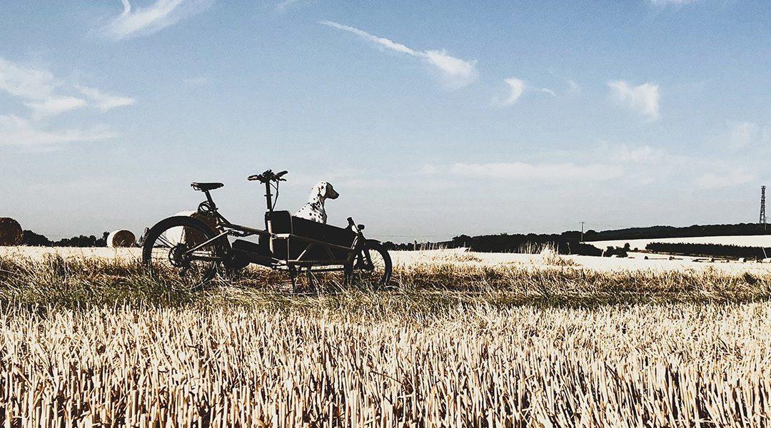 """Jacominas Enkel: """"Lastenrad fahren ist ein großes Abenteuer"""""""